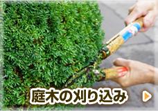 庭木の刈り込み